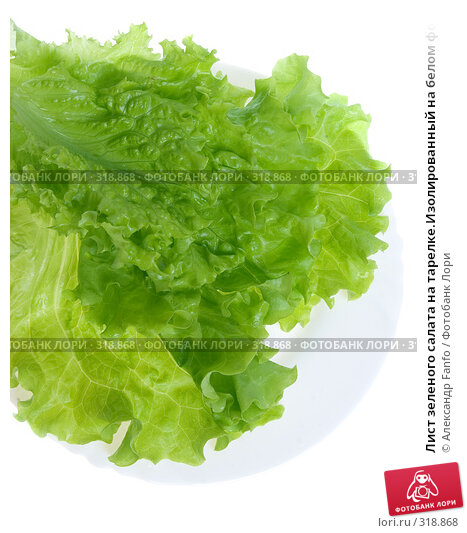 Лист зеленого салата на тарелке.Изолированный на белом фоне, фото № 318868, снято 27 марта 2017 г. (c) Александр Fanfo / Фотобанк Лори