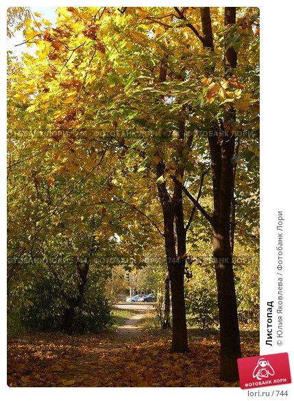 Листопад, фото № 744, снято 1 октября 2005 г. (c) Юлия Яковлева / Фотобанк Лори