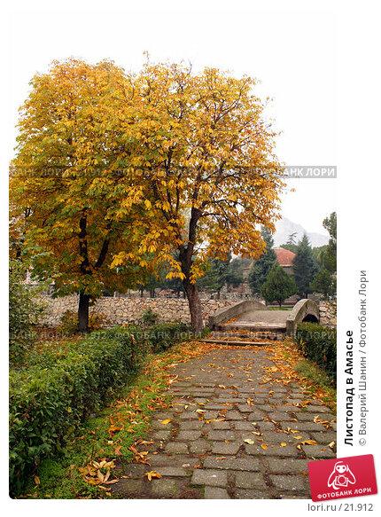 Листопад в Амасье, фото № 21912, снято 8 ноября 2006 г. (c) Валерий Шанин / Фотобанк Лори