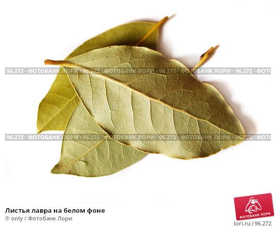 Купить «Листья лавра на белом фоне», фото № 96272, снято 5 апреля 2007 г. (c) only / Фотобанк Лори