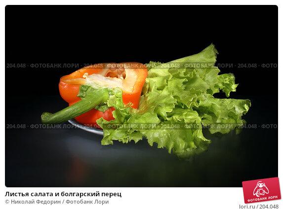 Листья салата и болгарский перец, фото № 204048, снято 17 февраля 2008 г. (c) Николай Федорин / Фотобанк Лори