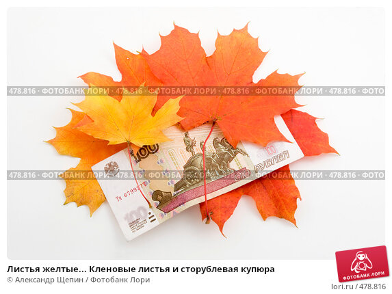 Купить «Листья желтые... Кленовые листья и сторублевая купюра», эксклюзивное фото № 478816, снято 25 сентября 2008 г. (c) Александр Щепин / Фотобанк Лори