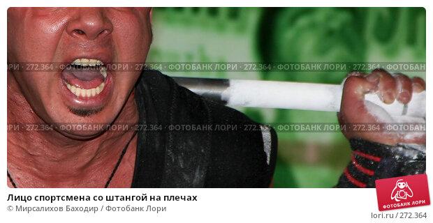 Лицо спортсмена со штангой на плечах, фото № 272364, снято 5 декабря 2016 г. (c) Мирсалихов Баходир / Фотобанк Лори