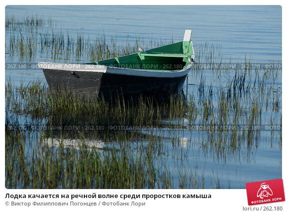 Лодка качается на речной волне среди проростков камыша, фото № 262180, снято 18 июня 2004 г. (c) Виктор Филиппович Погонцев / Фотобанк Лори
