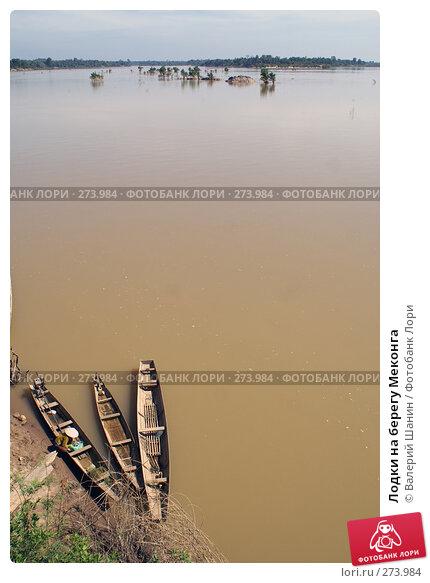 Лодки на берегу Меконга, фото № 273984, снято 10 декабря 2007 г. (c) Валерий Шанин / Фотобанк Лори