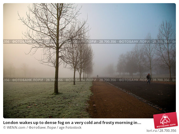 Купить «London wakes up to dense fog on a very cold and frosty morning in Finsbury Park, north London. Where: London, United Kingdom When: 28 Dec 2016 Credit: WENN.com», фото № 28700356, снято 28 декабря 2016 г. (c) age Fotostock / Фотобанк Лори