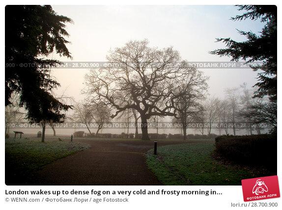 Купить «London wakes up to dense fog on a very cold and frosty morning in Finsbury Park, north London. Where: London, United Kingdom When: 28 Dec 2016 Credit: WENN.com», фото № 28700900, снято 28 декабря 2016 г. (c) age Fotostock / Фотобанк Лори