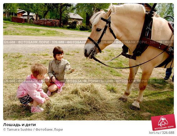 Купить «Лошадь и дети», фото № 326688, снято 7 июня 2008 г. (c) Tamara Sushko / Фотобанк Лори