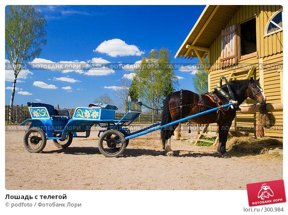 Купить «Лошадь с телегой», фото № 300984, снято 19 мая 2007 г. (c) podfoto / Фотобанк Лори