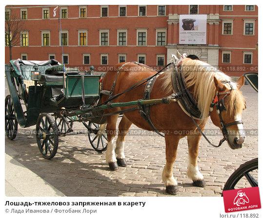 Лошадь-тяжеловоз запряженная в карету, фото № 118892, снято 4 апреля 2007 г. (c) Лада Иванова / Фотобанк Лори