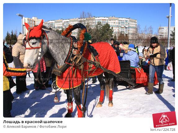 Лошадь в красной шапочке, фото № 224728, снято 9 марта 2008 г. (c) Алексей Баринов / Фотобанк Лори