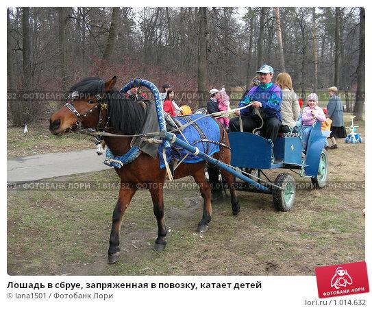 Лошадь в сбруе, запряженная в повозку, катает детей, эксклюзивное фото № 1014632, снято 12 апреля 2008 г. (c) lana1501 / Фотобанк Лори