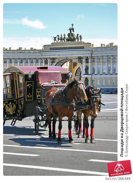Лошади на Дворцовой площади, фото № 268644, снято 28 июня 2005 г. (c) Александр Секретарев / Фотобанк Лори