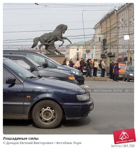 Лошадиные силы, фото № 261720, снято 17 апреля 2008 г. (c) Донцов Евгений Викторович / Фотобанк Лори