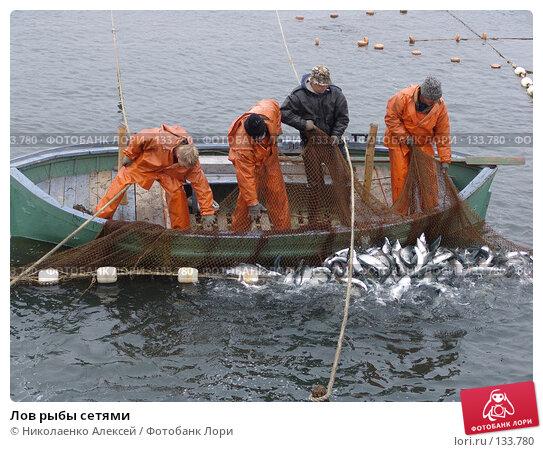 Лов рыбы сетями, фото № 133780, снято 10 июля 2005 г. (c) Николаенко Алексей / Фотобанк Лори