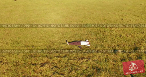Low orbital flight around man on green grass with notebook pad at yellow rural field. Стоковое видео, видеограф Александр Маркин / Фотобанк Лори