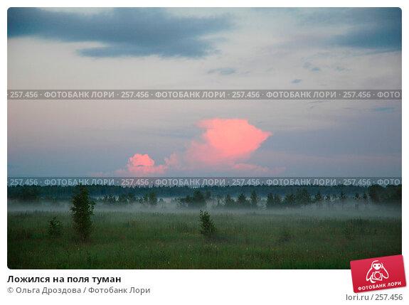 Ложился на поля туман, фото № 257456, снято 6 июля 2004 г. (c) Ольга Дроздова / Фотобанк Лори