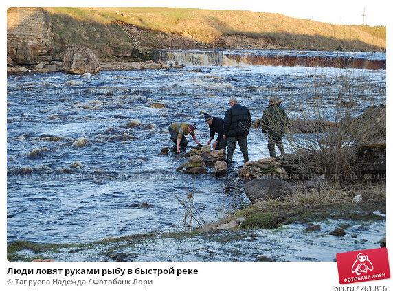 Люди ловят руками рыбу в быстрой реке, фото № 261816, снято 22 апреля 2008 г. (c) Тавруева Надежда / Фотобанк Лори