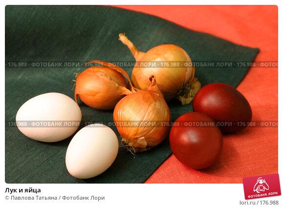 Лук и яйца, фото № 176988, снято 7 апреля 2007 г. (c) Павлова Татьяна / Фотобанк Лори