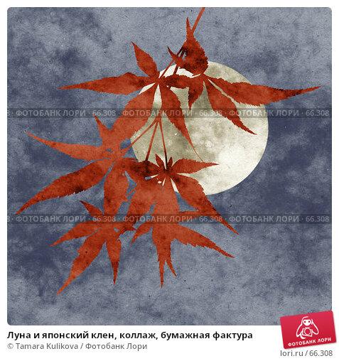 Луна и японский клен, коллаж, бумажная фактура, иллюстрация № 66308 (c) Tamara Kulikova / Фотобанк Лори
