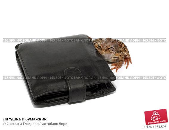 Лягушка и бумажник, фото № 163596, снято 7 июля 2007 г. (c) Cветлана Гладкова / Фотобанк Лори