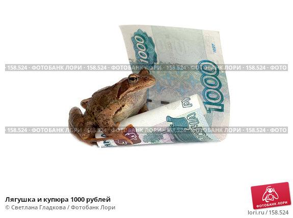Лягушка и купюра 1000 рублей, фото № 158524, снято 7 июля 2007 г. (c) Cветлана Гладкова / Фотобанк Лори