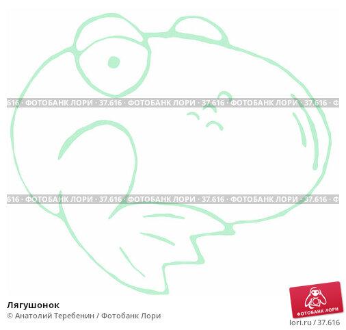 Лягушонок, иллюстрация № 37616 (c) Анатолий Теребенин / Фотобанк Лори