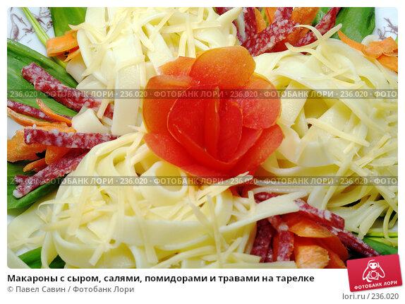 Макароны с сыром, салями, помидорами и травами на тарелке, фото № 236020, снято 15 января 2017 г. (c) Павел Савин / Фотобанк Лори