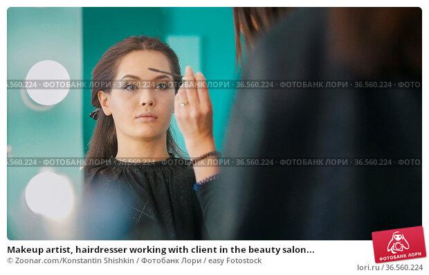 Makeup artist, hairdresser working with client in the beauty salon... Стоковое фото, фотограф Zoonar.com/Konstantin Shishkin / easy Fotostock / Фотобанк Лори