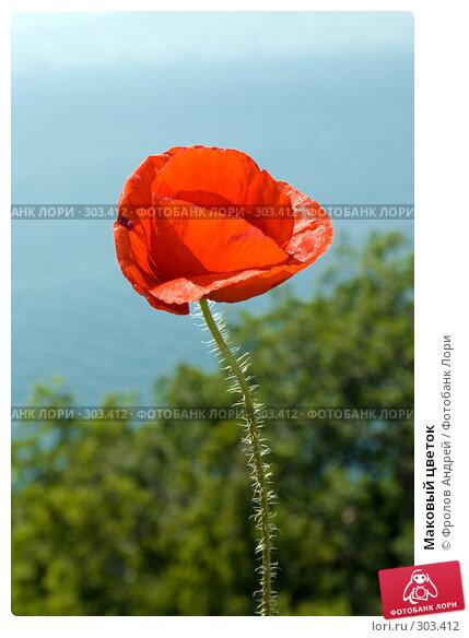 Купить «Маковый цветок», фото № 303412, снято 18 мая 2008 г. (c) Фролов Андрей / Фотобанк Лори