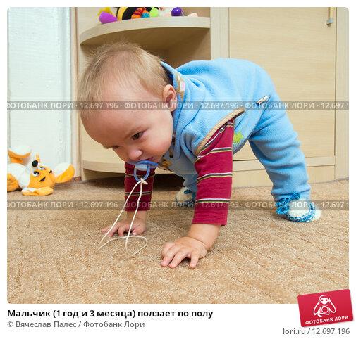 Купить «Мальчик (1 год и 3 месяца) ползает по полу», эксклюзивное фото № 12697196, снято 7 сентября 2015 г. (c) Вячеслав Палес / Фотобанк Лори