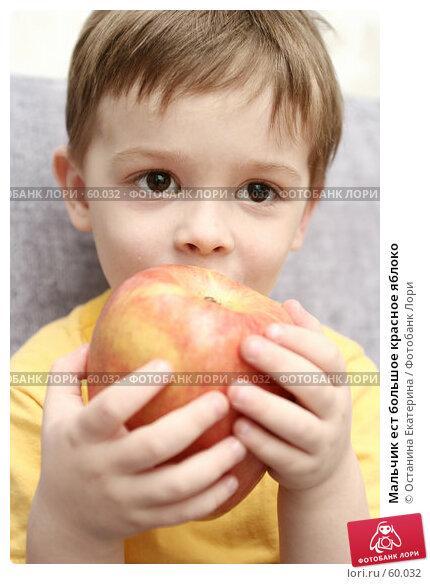 Мальчик ест большое красное яблоко, фото № 60032, снято 11 апреля 2007 г. (c) Останина Екатерина / Фотобанк Лори