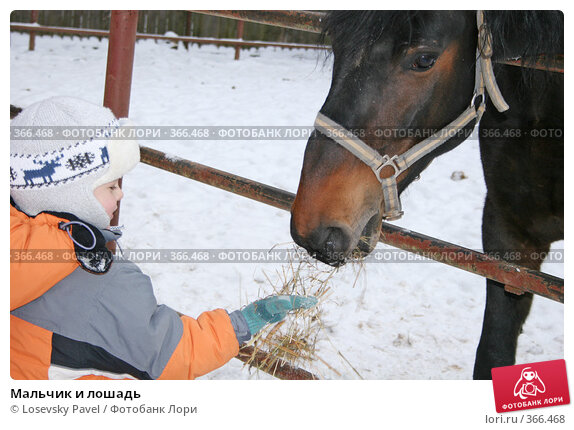 Купить «Мальчик и лошадь», фото № 366468, снято 28 января 2007 г. (c) Losevsky Pavel / Фотобанк Лори