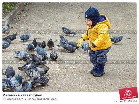 Мальчик и стая голубей (2013 год). Редакционное фото, фотограф Наталья Степченкова / Фотобанк Лори
