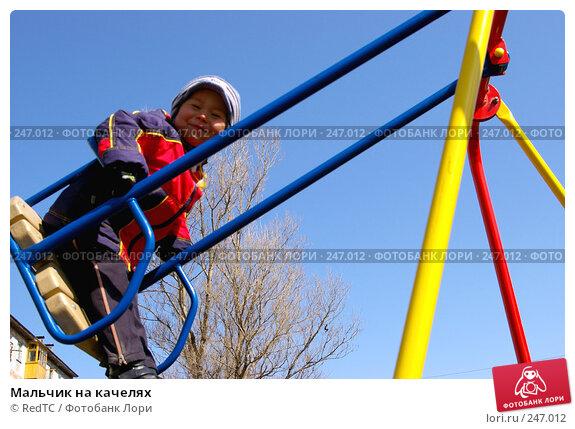 Мальчик на качелях, фото № 247012, снято 3 апреля 2008 г. (c) RedTC / Фотобанк Лори