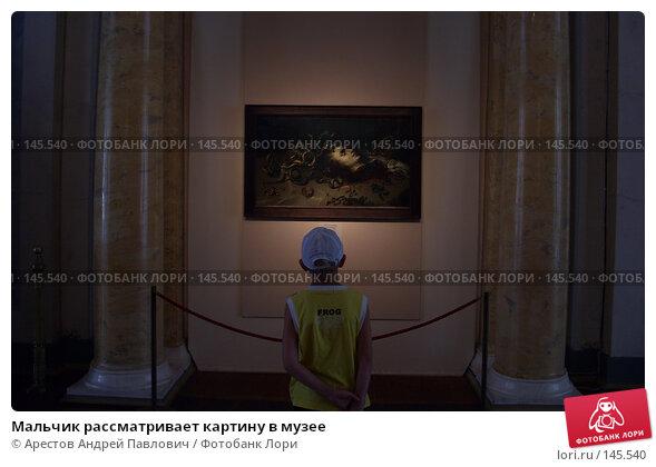 Мальчик рассматривает картину в музее, фото № 145540, снято 14 августа 2007 г. (c) Арестов Андрей Павлович / Фотобанк Лори