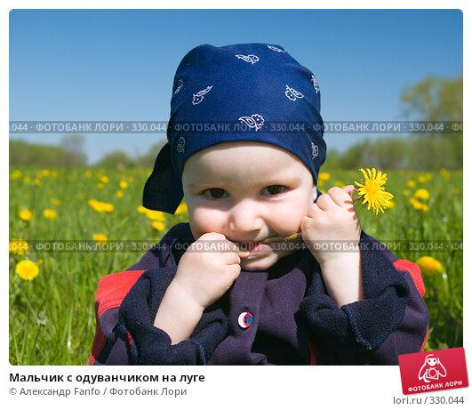 Мальчик с одуванчиком на луге, фото № 330044, снято 20 октября 2016 г. (c) Александр Fanfo / Фотобанк Лори