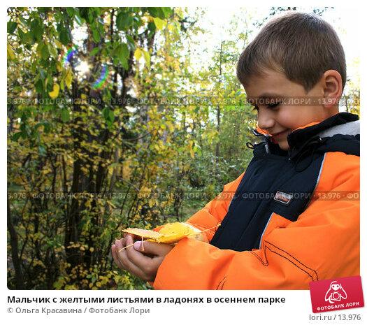 Мальчик с желтыми листьями в ладонях в осеннем парке, фото № 13976, снято 18 сентября 2006 г. (c) Ольга Красавина / Фотобанк Лори