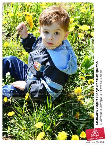 Мальчик сидит среди желтых цветов, фото № 59924, снято 16 мая 2007 г. (c) Останина Екатерина / Фотобанк Лори