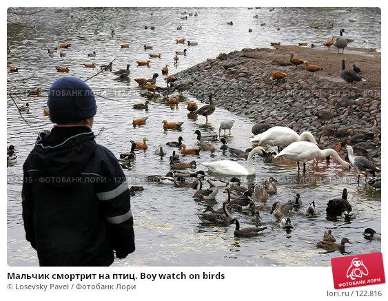 Мальчик смортрит на птиц. Boy watch on birds, фото № 122816, снято 23 октября 2005 г. (c) Losevsky Pavel / Фотобанк Лори