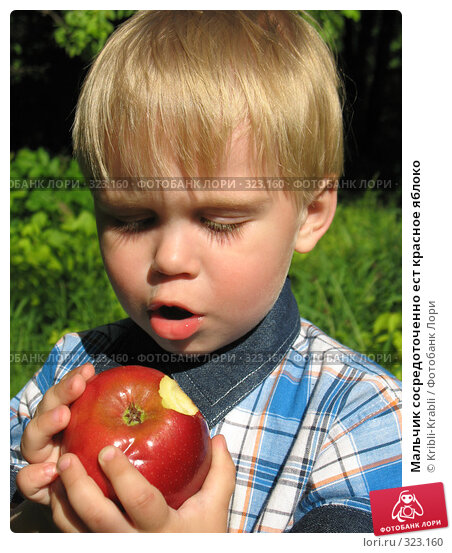 Мальчик сосредоточенно ест красное яблоко, фото № 323160, снято 12 июня 2008 г. (c) Kribli-Krabli / Фотобанк Лори