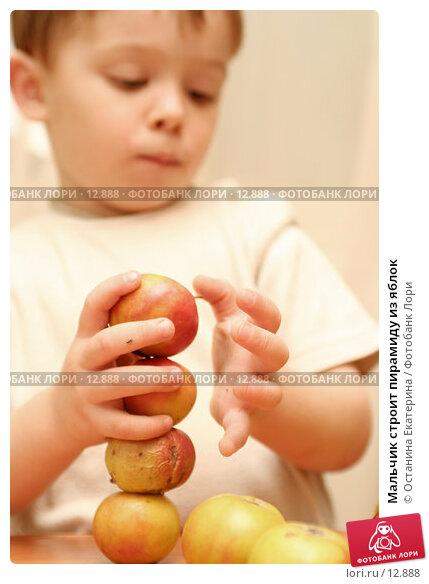Купить «Мальчик строит пирамиду из яблок », фото № 12888, снято 22 октября 2006 г. (c) Останина Екатерина / Фотобанк Лори