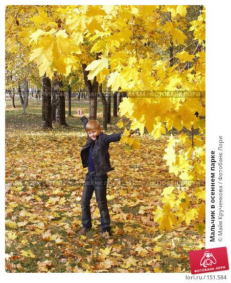 Купить «Мальчик в осеннем парке», фото № 151584, снято 28 сентября 2007 г. (c) Майя Крученкова / Фотобанк Лори