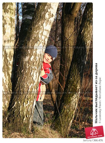 Мальчик выглядывает из-за дерева, фото № 366476, снято 24 апреля 2006 г. (c) Losevsky Pavel / Фотобанк Лори