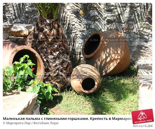 Маленькая пальма с глиняными горшками. Крепость в Мармарисе. Турция, фото № 6264, снято 12 июля 2006 г. (c) Маргарита Лир / Фотобанк Лори