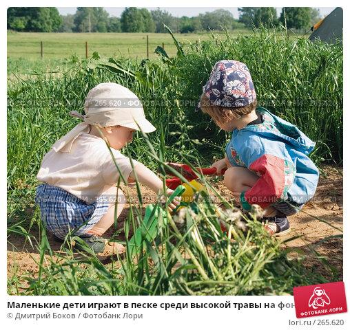 Маленькие дети играют в песке среди высокой травы на фоне деревенского пейзажа, фото № 265620, снято 3 июня 2006 г. (c) Дмитрий Боков / Фотобанк Лори