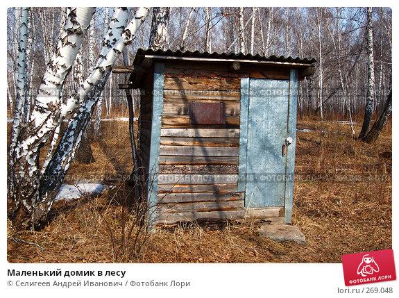 Маленький домик в лесу, фото № 269048, снято 11 апреля 2008 г. (c) Селигеев Андрей Иванович / Фотобанк Лори