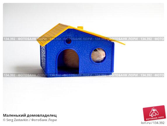 Маленький домовладелец, фото № 134392, снято 14 мая 2006 г. (c) Serg Zastavkin / Фотобанк Лори