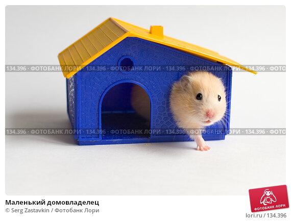 Маленький домовладелец, фото № 134396, снято 14 мая 2006 г. (c) Serg Zastavkin / Фотобанк Лори