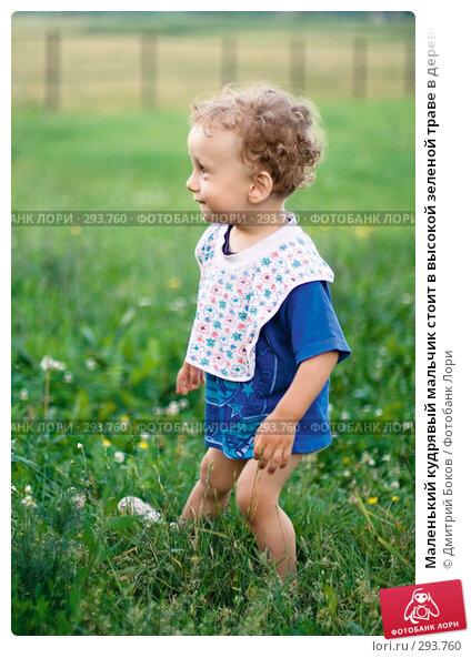 Маленький кудрявый мальчик стоит в высокой зеленой траве в деревне и улыбается (1), фото № 293760, снято 15 июля 2006 г. (c) Дмитрий Боков / Фотобанк Лори